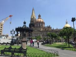 Guadalajara centro